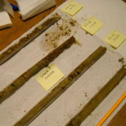 soil sleeve samples